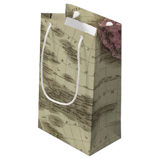 Western Hemisphere 4 Small Gift Bag