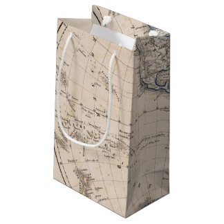Western Hemisphere 6 Small Gift Bag