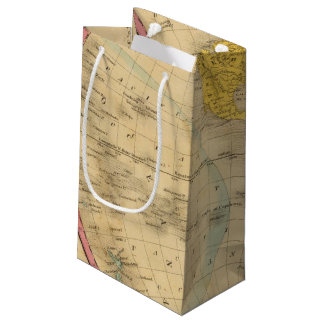 Western Hemisphere Small Gift Bag