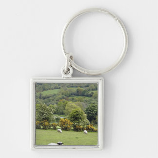 Western Ireland, Dingle Peninsula, broad Key Ring