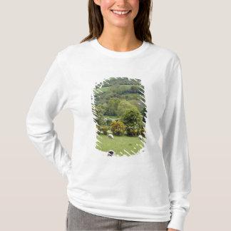 Western Ireland, Dingle Peninsula, broad T-Shirt