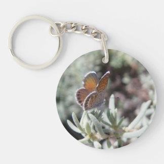 Western Pygmy Blue Butterfly Keychain