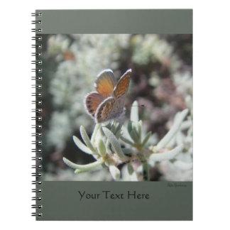 Western Pygmy Blue Spiral Notebook 2
