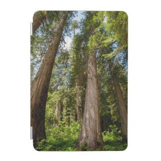 Western Red Cedar Trees iPad Mini Cover