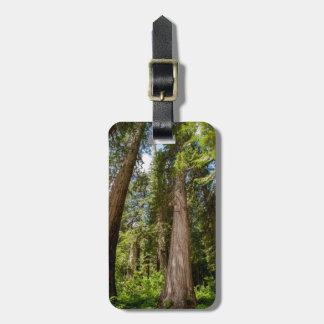 Western Red Cedar Trees Luggage Tag