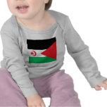 Western Sahara High quality Flag
