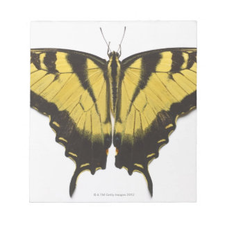 Western Tiger Swallowtail Butterfly Notepad