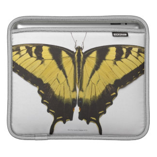 Western Tiger Swallowtail Butterfly Sleeves For iPads