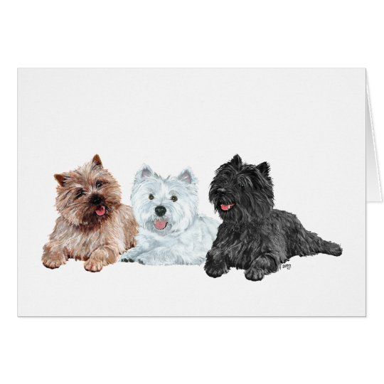 Westie and Cairn Terriers Card