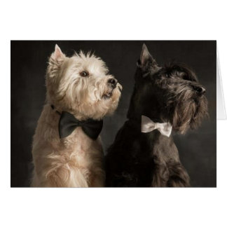Westie and Scottie Card