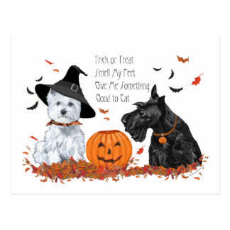 Westie and Scottie Halloween Postcard