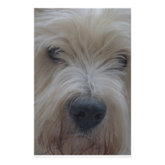 Westie Benj Personalized Stationery