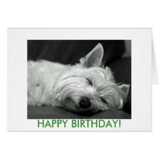 Westie Dog Birthday Card