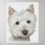 Westie Dog Print