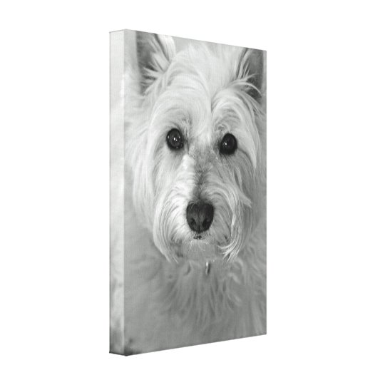 Westie Dog (West Highland White Terrier) Canvas Canvas