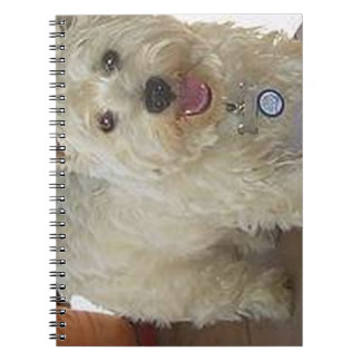 westie full.png notebook
