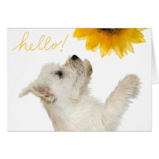 Westie Hello Blank Notecard Greeting Card