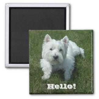 Westie Hello Photo Magnet