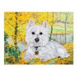 Westie in Golden Woods Postcards