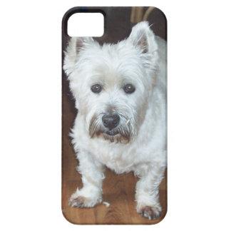 Westie iPhone case brown