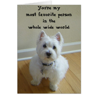 Westie Most Favorite Person Greeting Card