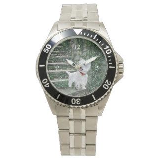 Westie on Ivy Steps Wrist Watch