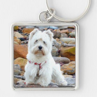 Westie on the Rocks Silver-Colored Square Key Ring