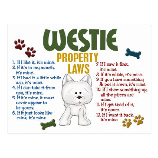 Westie Property Laws 4 Post Cards