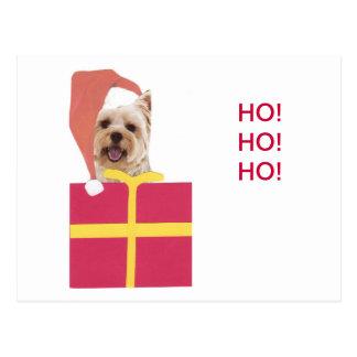 Westie Santa Hat Gift Box Postcard
