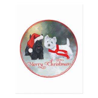 Westie Scottie Christmas Postcard