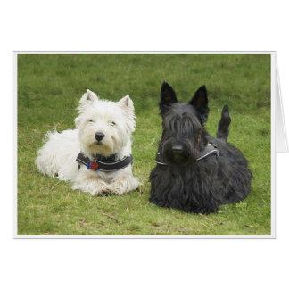 Westie & Scottie Green Grass Greeting Cards