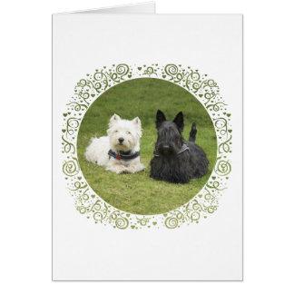 Westie & Scottie Green Grass Greeting Card