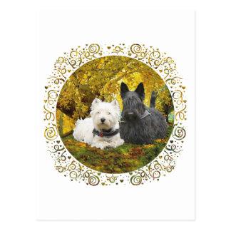 Westie & Scottie in Autumn Postcard
