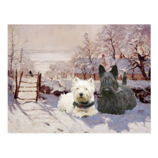 Westie & Scottie Winter Magpie Postcard