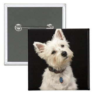 Westie (West Highland terrier) with collar 15 Cm Square Badge