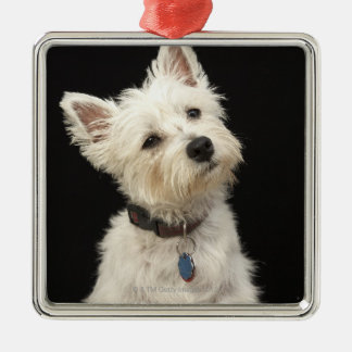 Westie (West Highland terrier) with collar Christmas Ornament