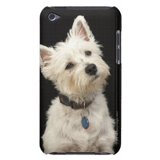 Westie (West Highland terrier) with collar iPod Touch Cover