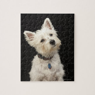 Westie (West Highland terrier) with collar Jigsaw Puzzle