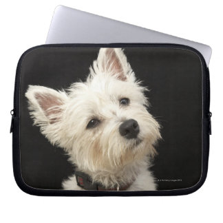 Westie (West Highland terrier) with collar Laptop Sleeve