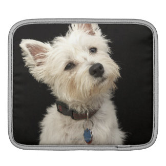 Westie (West Highland terrier) with collar Sleeves For iPads