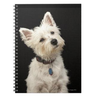 Westie (West Highland terrier) with collar Spiral Notebook
