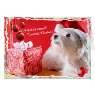 Westie Wonderful Christmas Wishes 4 - Customize It Card