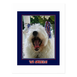 Westie Yay America Postcard