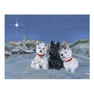 Westies and a Scottie Christmas Postcards