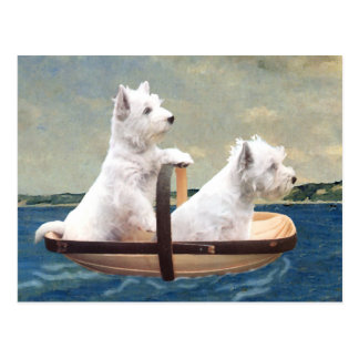 Westies Set Sail Postcard