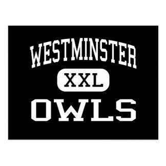Westminster - Owls - High - Westminster Maryland Postcard