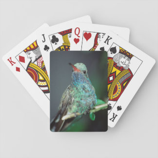 Westmorland, Westmorland Tobaso, Hummingbird Playing Cards