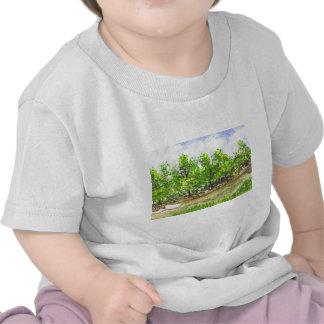 Weston Brook Shirt