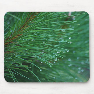 Wet and green pine needles mousepad