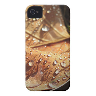 Wet Autumn Leaf - Blackberry Case